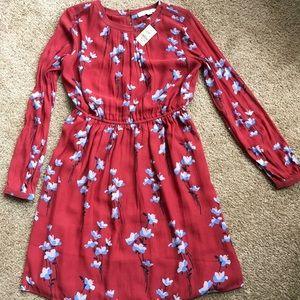 Ann Taylor Loft Rust Floral print dress XSP NWT